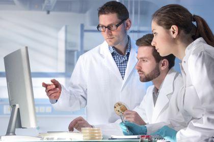 细胞培养系统:杂交瘤细胞